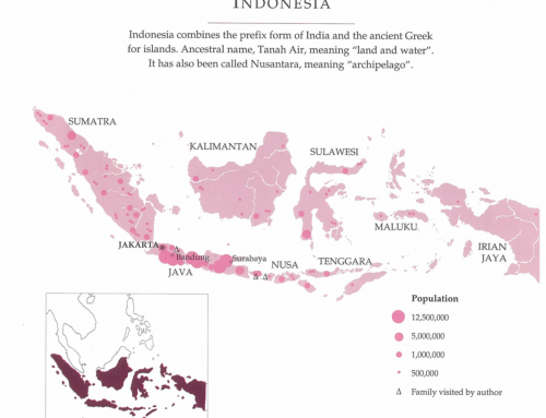 The Indonesians